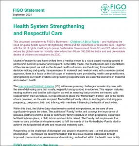 First page of Health Systems Strengtehning and Respectful Care Statement